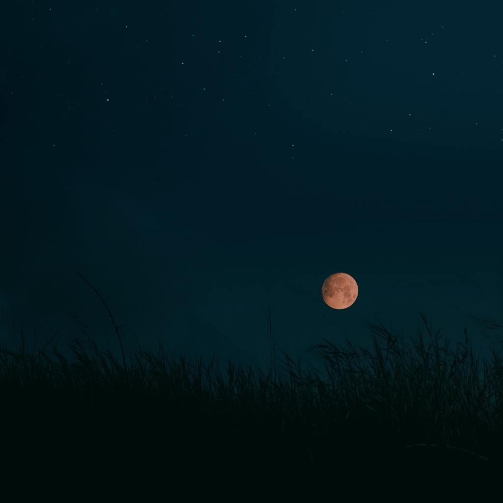 rituales luna llena de cosecha